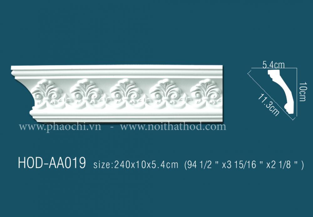 HOD-AA019
